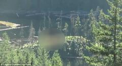 Descoperire BIZARĂ în pădure: Ce au filmat doi tineri care se plimbau prin sălbăticie, în provincia canadiană British Columbia (VIDEO)