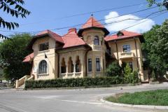 Necunoscutul Mihai Codreanu (6)