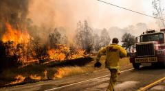 În California a fost decretată STARE DE URGENȚĂ. Incendiile de pădure fac RAVAGII