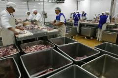 Genocidul servit zilnic la farfurie românilor. Câtă carne conţine un kilogram de carne