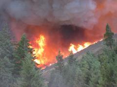 Incendii de vegetaţie în Cercul Polar Arctic