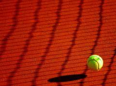 Roland Garros 2019. Debut cu victorii pentru Karolina Pliskova, Sloane Stephens şi Elina Svitolina