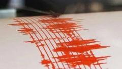 Cutremur de 3.7 pe scara Richter în Vrancea