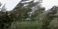 Cod galben de vânt puternic în zonele de litoral din judeţele Tulcea şi Constanţa, vineri după-amiaza