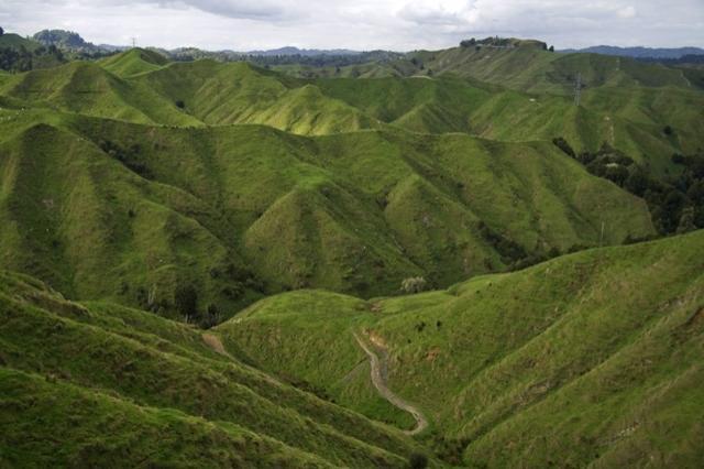Noua Zeelandă Facebook: Biosecuritatea, Stat în Stat în Noua Zeelandă