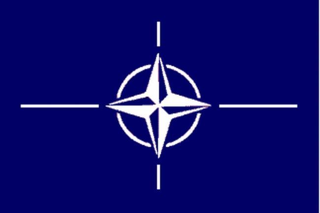 NATO fixează o BRIGADĂ MULTINAȚIONALĂ în ROMÂNIA
