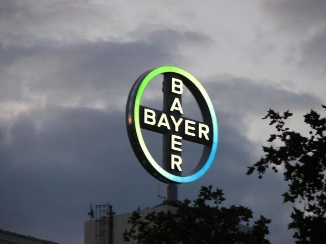 TRANZACŢIA ANULUI - Bayer a cumpărat Monsanto cu 66 miliarde de dolari