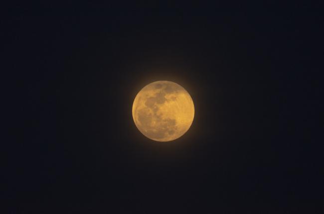 Cum te afecteaza Luna Noua pe 25 mai