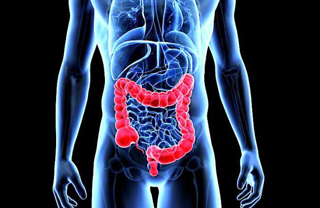 Cinci lucruri inedite pe care nu le È™tiai despre probiotice