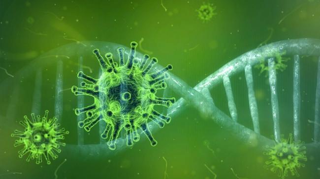 El primer caso de infección con la cepa india del virus SARS-CoV-2 en Suiza