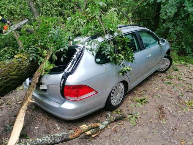 A tree was knocked down by the wind and fell over a car.  Traffic was blocked on DJ 411 and DJ 401 B.