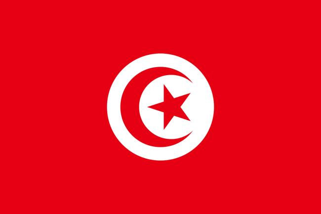 The United States is pressuring Tunisia to return to democracy