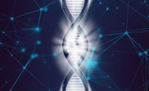 """""""Ceas"""" genetic care prezice durata de viaţă a fiecărei specii, descoperit de cercetătorii australieni"""