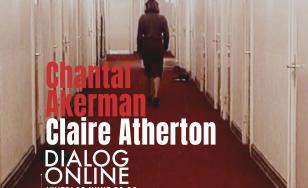 The Waiting Room. Claire Atherton despre Chantal Akerman