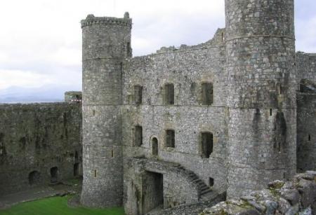 TE TREC FIORI RECI PE ŞIRA SPINĂRII! Ce a surprins o clarvăzătoare într-un castel medieval din Ţara Galilor (VIDEO)