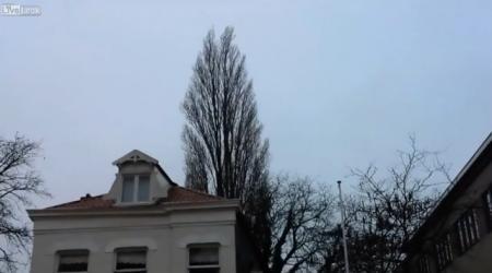 MOMENT MAGIC, surprins în Olanda! Zeci de mii de oameni au dat click să vadă o scenă ABSOLUT FABULOASĂ (VIDEO)