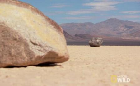Fenomen INCREDIBIL în cea mai aridă zonă deşertică din SUA. Oamenii de ştiinţă nu au găsit nicio explicaţie (VIDEO)