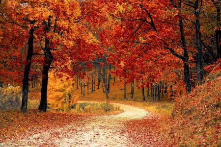 Horoscop săptămânal, 24 - 30 septembrie. Săgetătorii primesc răspunsurile pe care le căutau