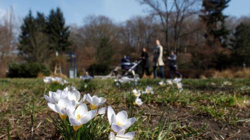 Vremea va fi în încălzire treptată până în jurul datei de 15 aprilie. Vezi prognoza meteo pentru 10-23 aprilie