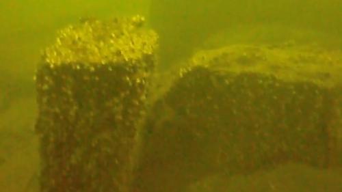 Comoară de 150 milioane de dolari, descoperită pe fundul mării!