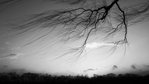 AVERTIZARE NOWCASTING - Cod galben de vânt puternic în Banat