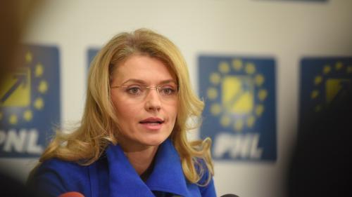 Gorghiu: PNL salută iniţiativa privind o nouă lege referitoare la statutul Casei Regale