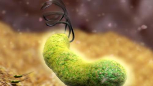 Sfatul medicului. O bacterie teribilă își face de cap în mațele tale. Tu știi cum să o identifici și să o tratezi?