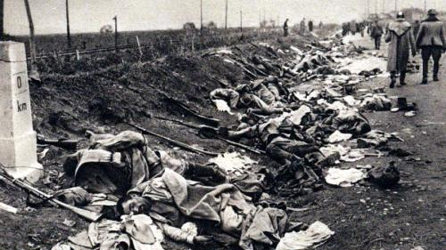 Erori majore difuzate în spațiul public privind intrarea României în primul Război Mondial