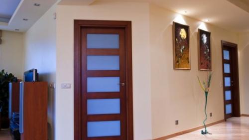 D'ale casei: Materialul ușii de interior