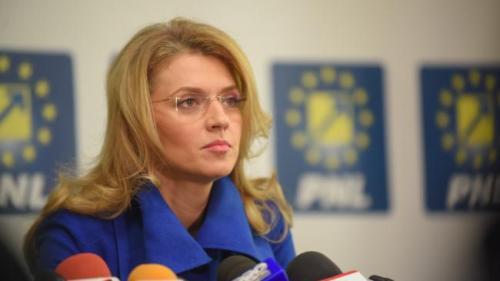 Alina Gorghiu: Cifrele victimelor violenţei domestice din România sunt foarte sus