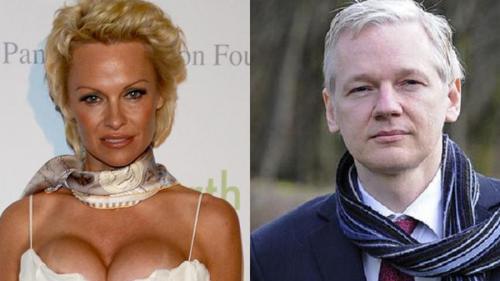 Pamela Anderson ar avea o relaţie cu Julian Assange