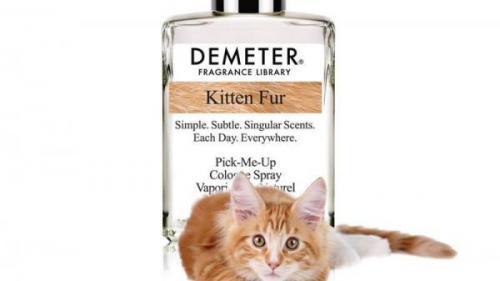 O companie din SUA a lansat un parfum cu miros de... blană de pisică