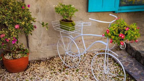 Idei pentru o grădină de poveste.Nu arunca vechiturile, ci foloseşte-le ca suport pentru flori!