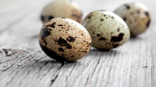 Tratamente naturiste. Beneficiile terapeutice ale consumului de ouă de prepeliţă. Ce boli pot fi tratate
