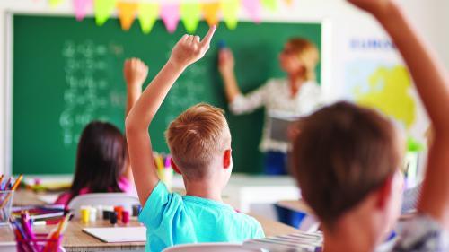 """Statul și mediul de afaceri vor eliminarea """"școlilor-fantomă"""""""