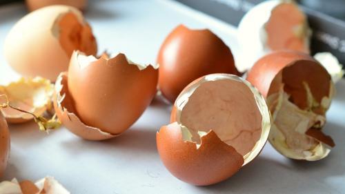 Iată de ce nu trebuie să mai arunci cojile de ou și să le mănânci