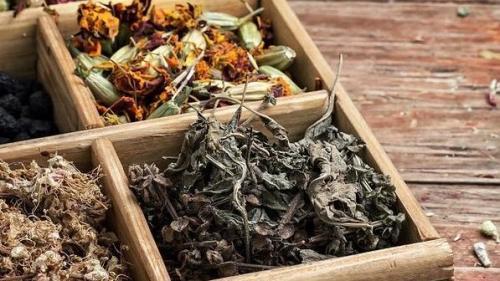 Tratamente naturiste. 1 ingredient, 7 rețete și 100 de boli vindecate
