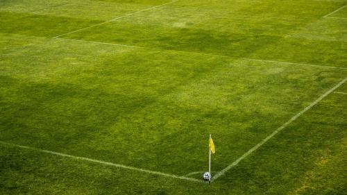 Italienii de la Atalanta îl vor pe Olimpiu Moruţan de la FC Botoşani