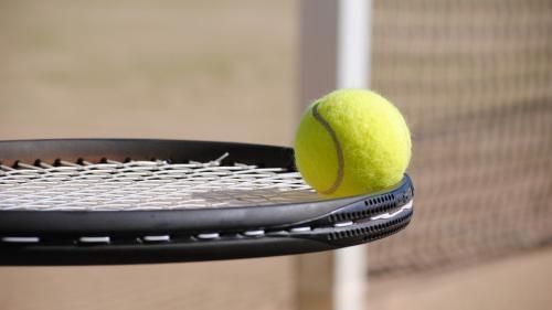 Tecău şi Rojer au câştigat titlul în proba de dublu la Geneva (ATP)
