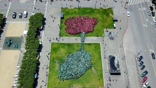 2.400 de oameni pentru a forma o floare de Cartea Recordurilor, la San Francisco