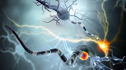 Furtuna electrică din creier