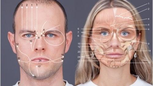 """Cum ajunge """"Codul feţei"""" să spună adevărul, atunci când interlocutorul minte. Metoda cunoscută din serialul """"Lie to me"""""""