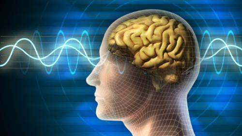 Studiu: Unele zone din creier sunt mai active la femei decât la bărbați