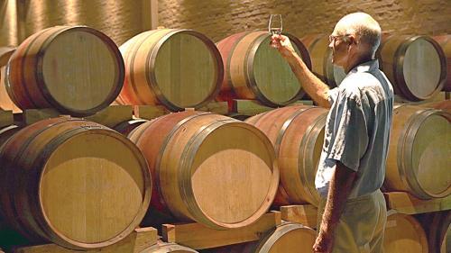 Vinul românesc din 2017 va fi unul de excepţie