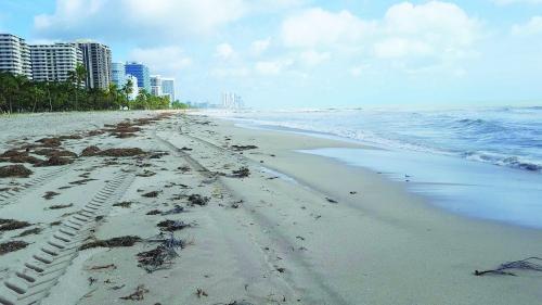 """Uraganul Irma, prin ochii unui român rămas blocat într-un hotel din Miami: """"La fiecare rafală mai puternică aveam impresia că un metrou sau un tren trece pe lângă noi"""""""