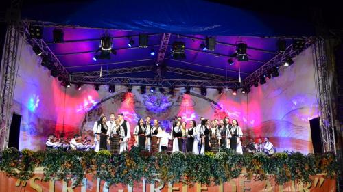 """Alba: O tânără din Sălaj câștigătoarea Marelui Premiu a celei de a XVII-a ediţii a Festivalului Naţional de Folclor """"Strugurele de Aur"""""""