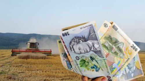 Fermierii care îndeplinesc această condiție, vor primi subvenția APIA în 2017