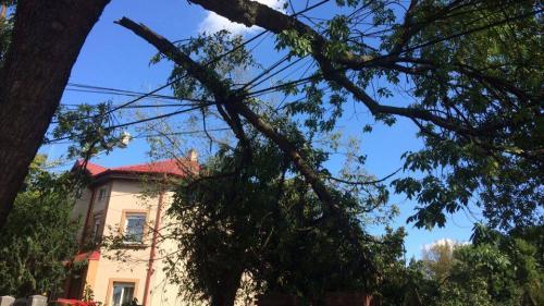 FĂRĂ CURENT ELECTRIC, 86 de străzi din Timișoara la 5 zile după furtună