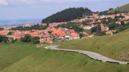 Judecătoria Balş schimbă în totalitate sentinţa privind terenurile din satul arădean Nadăş
