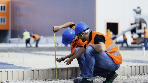 Puii de constructori: greu de școlit, greu de adus la muncă
